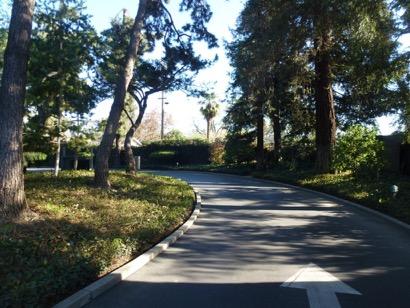 downey-park-modesto-2